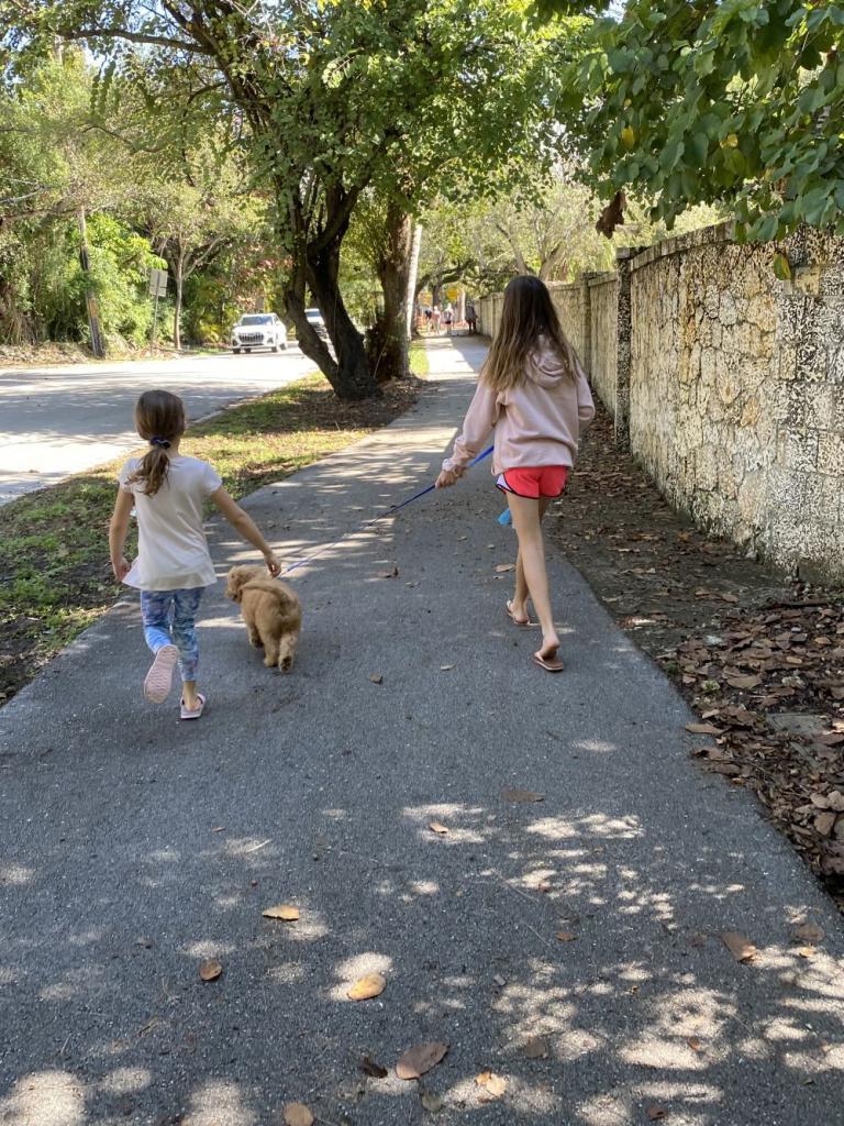 Walks On The Commodore Bike Trail
